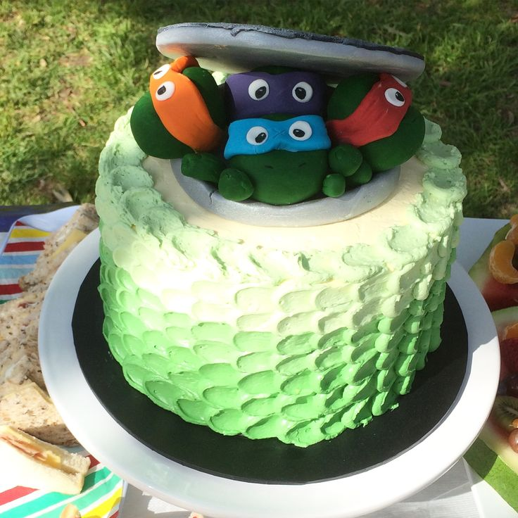 TMNT birthday cake by Little Pudding