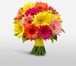 gerber daisy bouquet-- Greg always bought these for me so I wonder if We should incorporate these into The wedding :)