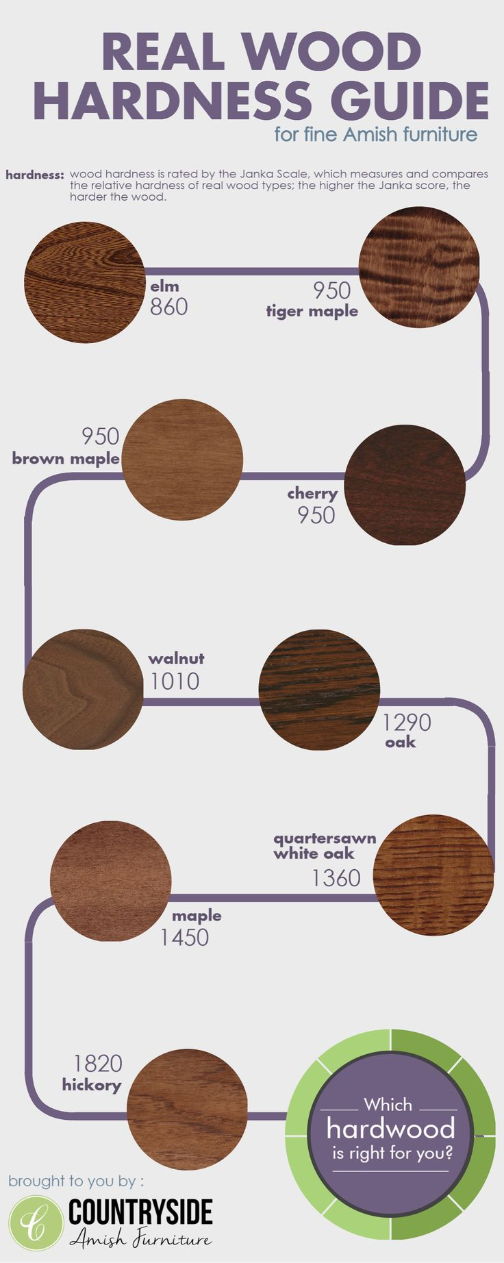 An infographic showing the relative hardness of domestic hardwoods used in creating fine, handcrafted Amish furniture.
