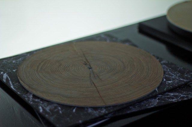 當你把樹的年輪放到唱盤機上,播放出來的聲音竟然是如此優美 » ㄇㄞˋ點子靈感創意誌
