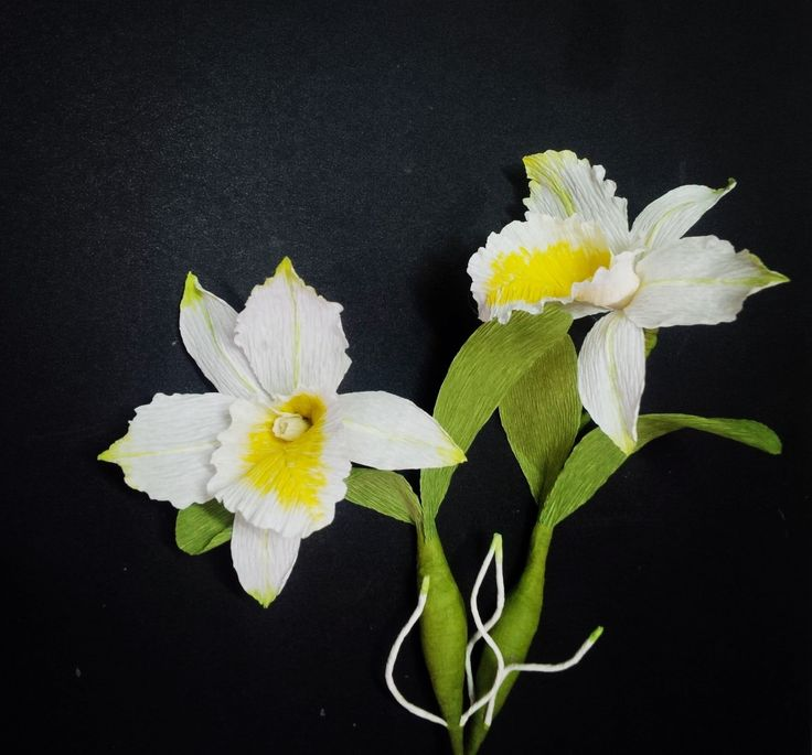 510 best flowers youtube videos images on pinterest paper flowers how to make cattleya orchid flower from crepe paper craft tutorial mightylinksfo