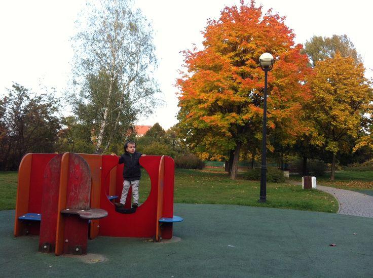park powsińska