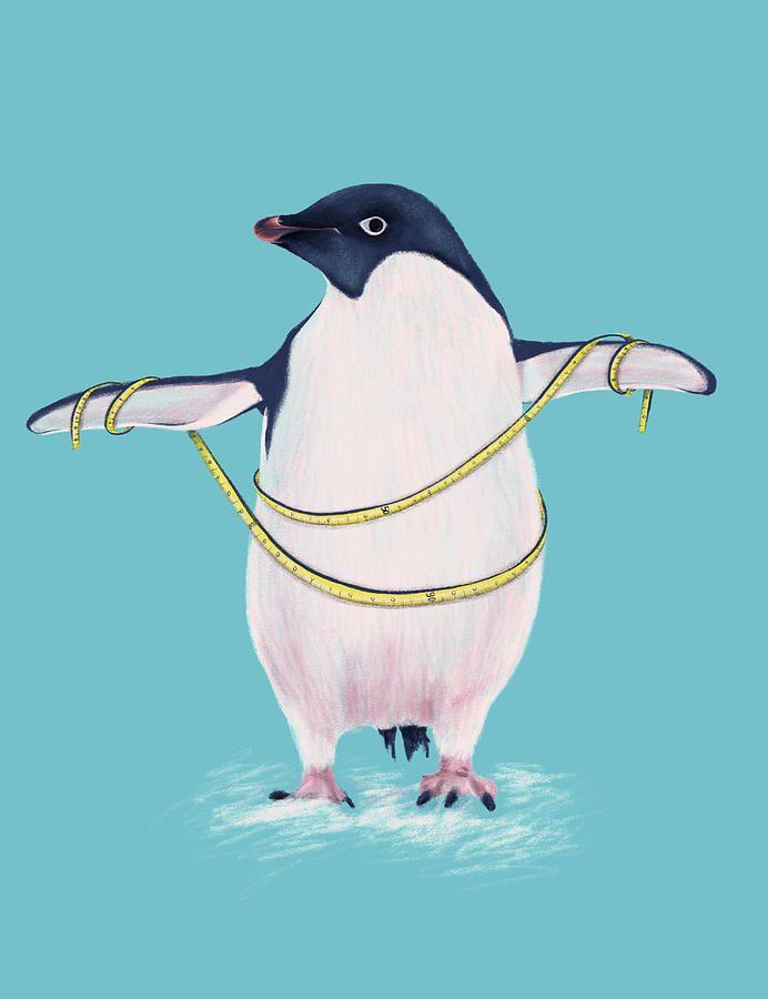Penguin Fashion Parade - cover