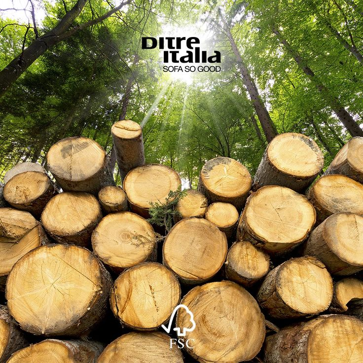 We use only European fir and beech with FSC certificate.