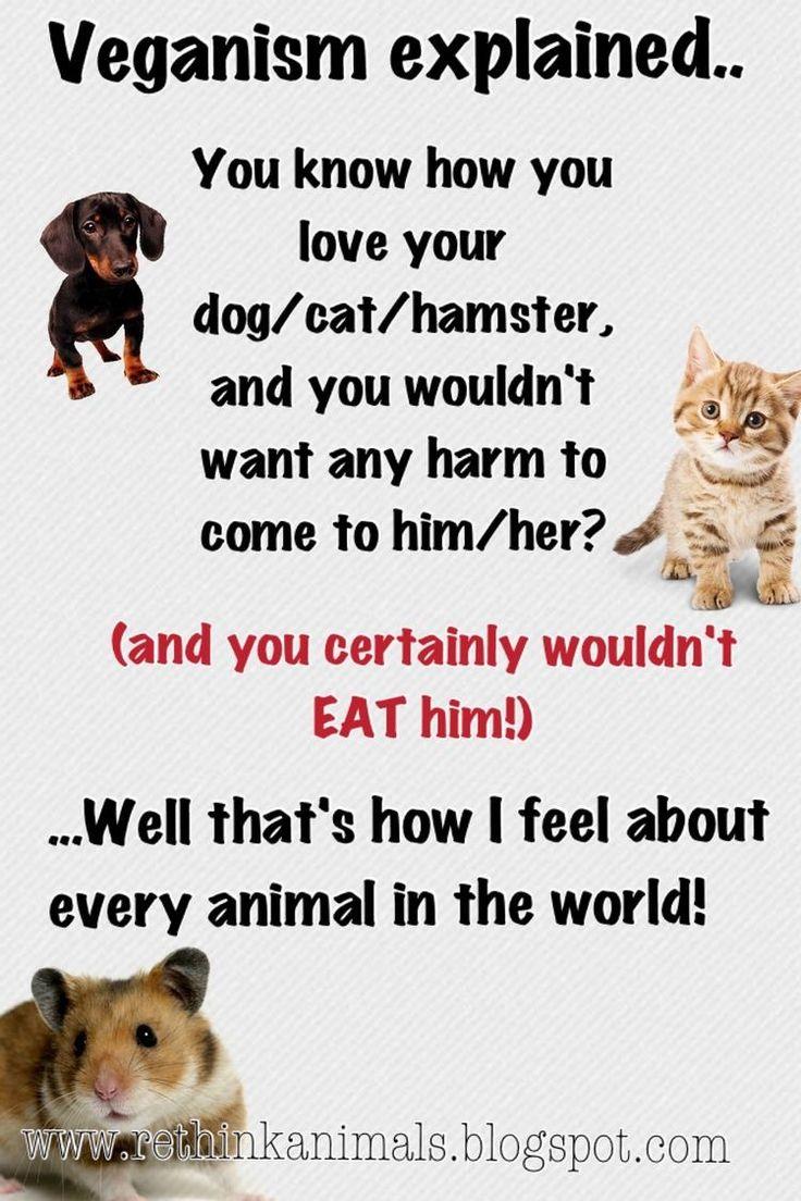 Animal Rights Quotes The 25 Best Animal Activist Ideas On Pinterest  Peta Animal