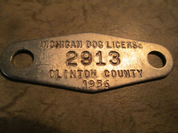 Dog License - 1956 Clinton County Michigan / Pet Tag / Dog License by AuctionAddict38 on Etsy