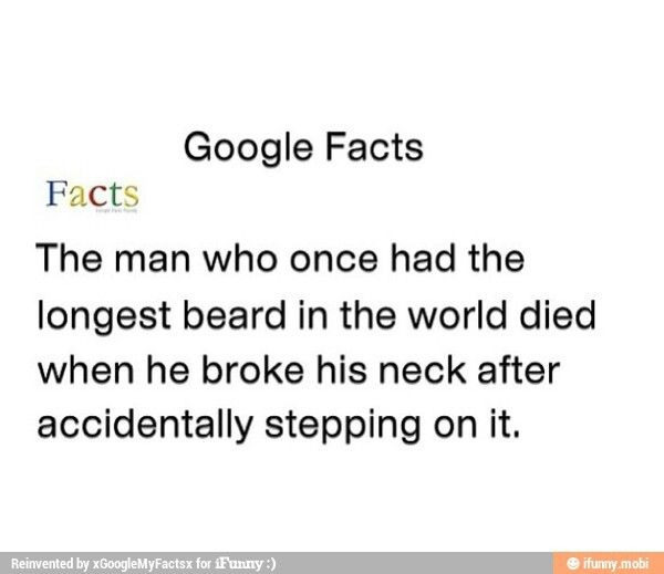 google facts beard
