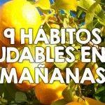 Hábitos saludables para practicar todas las mañanas