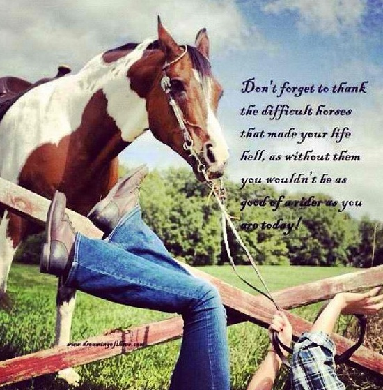 Cowgirl and Horse Sayings | cowgirl sayings
