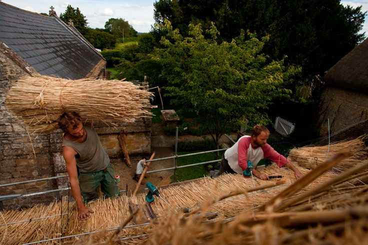 Traditional thatching in Somerset, by Nick Fleming.