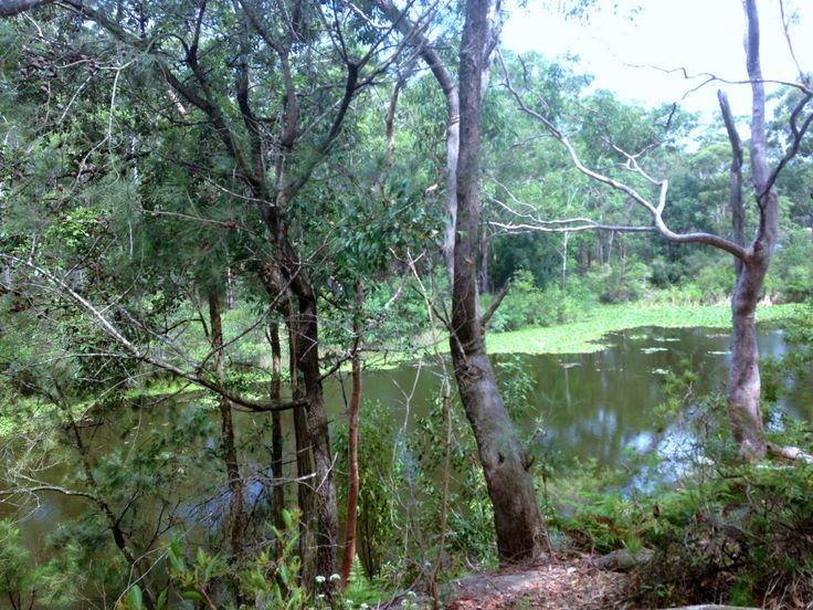 Lake Parramatta Reserve Circuit - Wondrous
