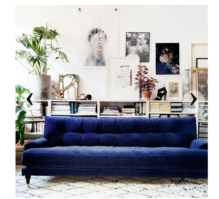 Bookshelf behind sofa
