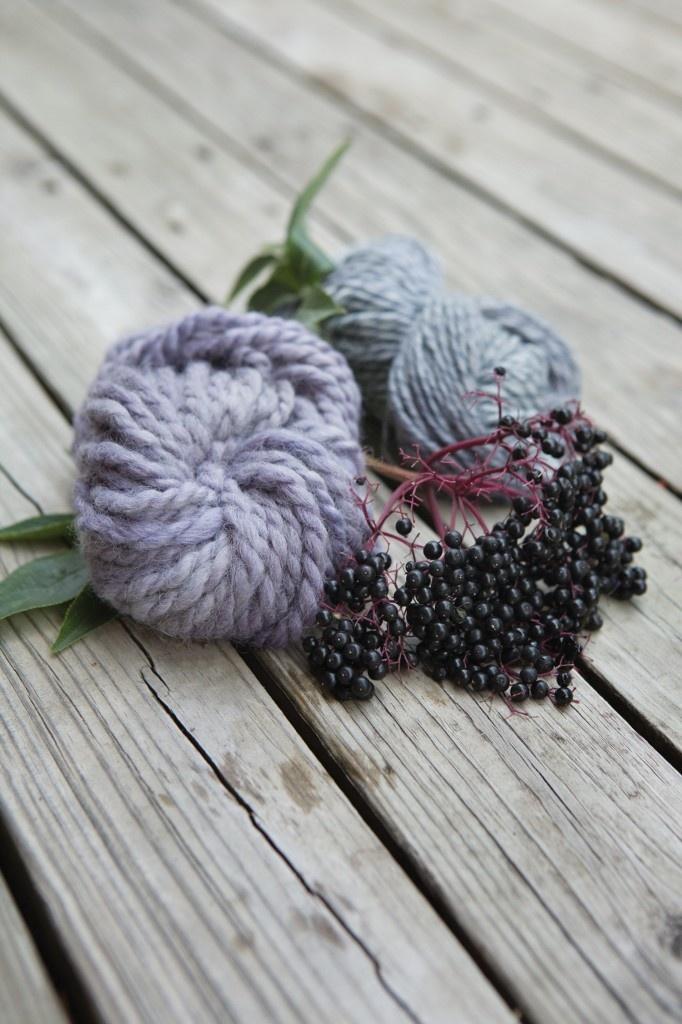 Flowers of the Northeast Project. Elderberries dye. (image via Flora Grubb Gardens)