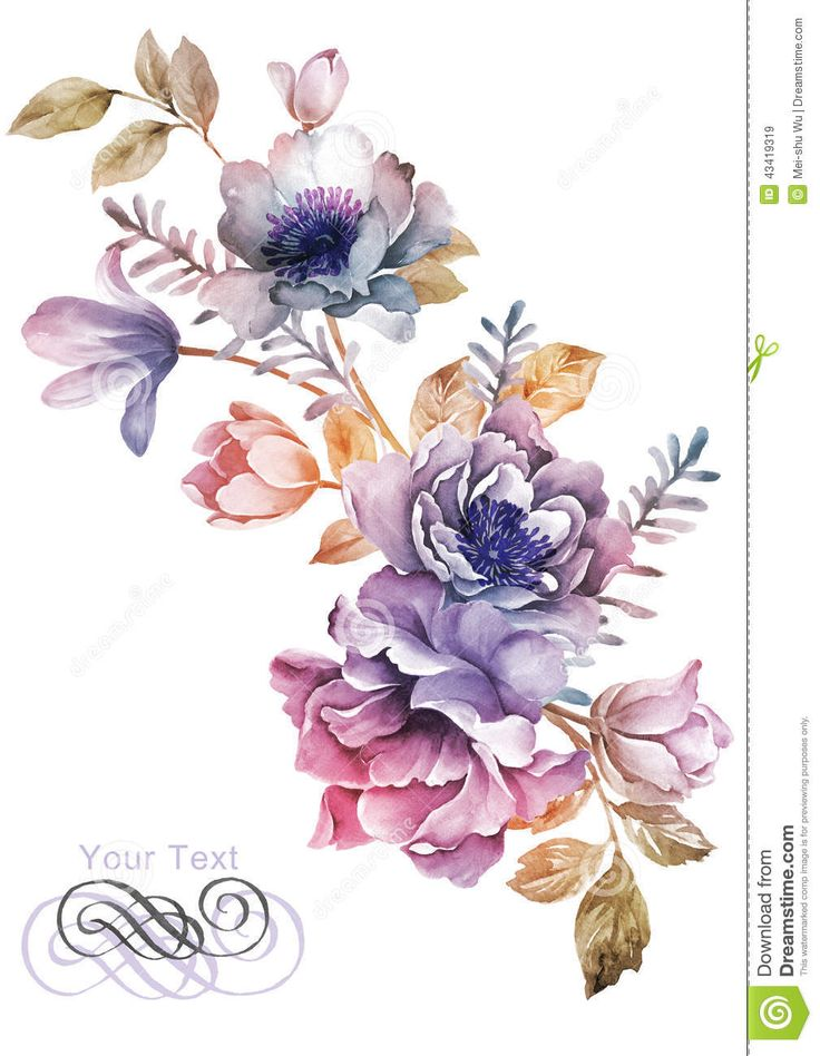 Watercolor Illustration Flower In Simple Background - Download From Over 41 Million High Quality Stock Photos, Images, Vectors. Sign up for FREE today. Image: 43419319