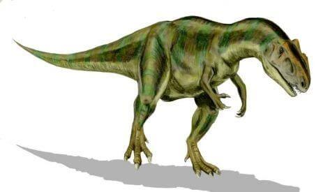 Allosaurus - best dinosaur pics