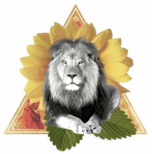 Leo the radiant Lion