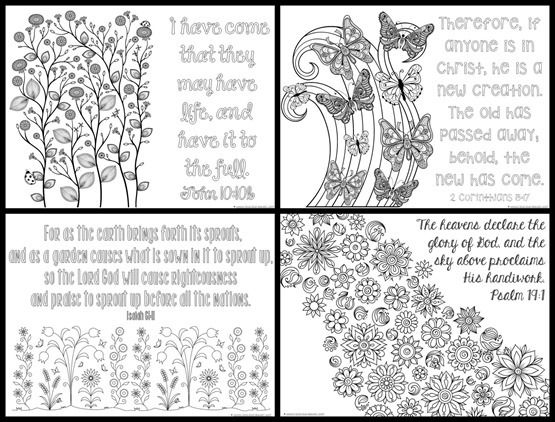 576 best bible journaling images on Pinterest Adult