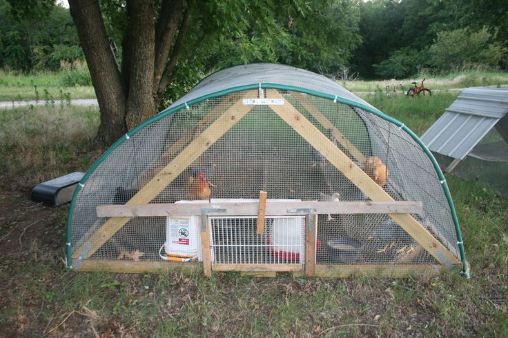 Hoop house for Chickens