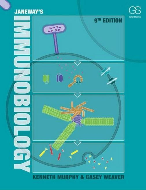 """""""Janeway's immunobiology : 9th edition"""" / Kenneth Murphy and Casey T. Weaver. New York, N.Y. : Garland Science, cop. 2016. Matèries : Immunologia. #nabibbell"""