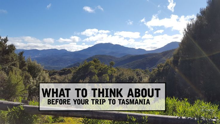 The top knowledge! What you actually need to prepare for before coming to Tasmania!