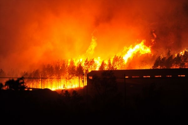 Western Cape Government launches humanitarian campaign after Knysna fires and storm Ministers today launched an urgent humanitarian effort in the wake of the devastating fires and storms in the Eden District of the Southern Cape.  https://www.thesouthafrican.com/western-cape-government-launches-humanitarian-campaign-after-knysna-fires-and-storm/