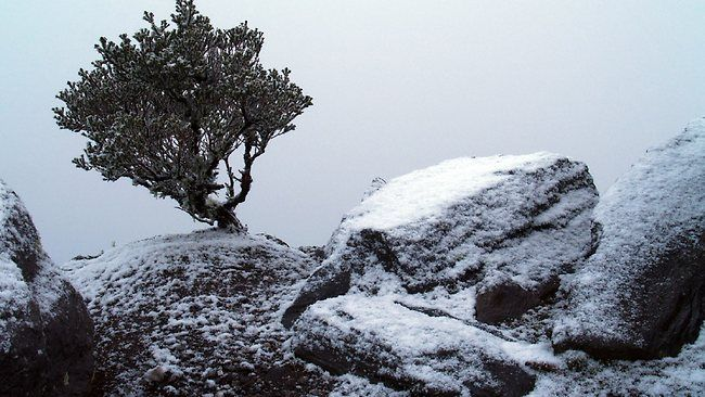 In our winter months when the weather is right, we get snow fall on Bluff Knoll. Worth a sight to see! Stirling Ranges, Albany WA