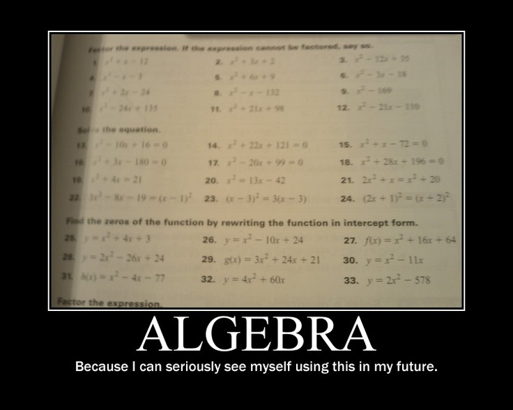 Can someone IM with me and help me with algebra questions?