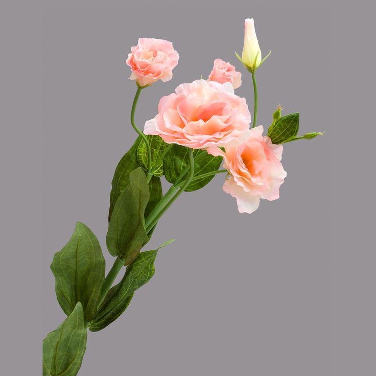 Орхидея букетах, цветы похожие на розы кустовые