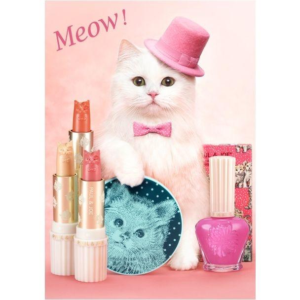 PAUL & JOE  Cat Blusher Sticks: Kitty Cat, Spring Makeup, Makeup Collection, Spring Collection, Cat Makeup, Doce Paul, Paul Joe, Cat Lady, Tops Hats