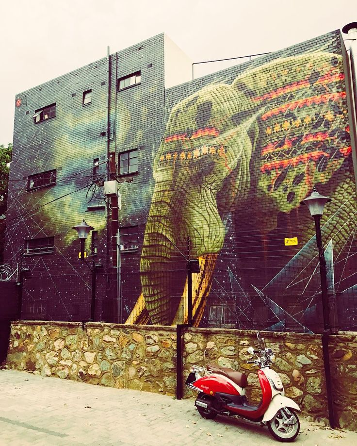 Awesome Street Art #wow #elephant #art #streetart #graffiti #wallart #boltonroad #cool #streetstyle #vespa #swag #amazing #hot #awesome #love #like #instagood #instadaily #instaart #instalove #instamood #design #creativity #creativityfound #bestoftheday #iphoneonly #happiness #colour