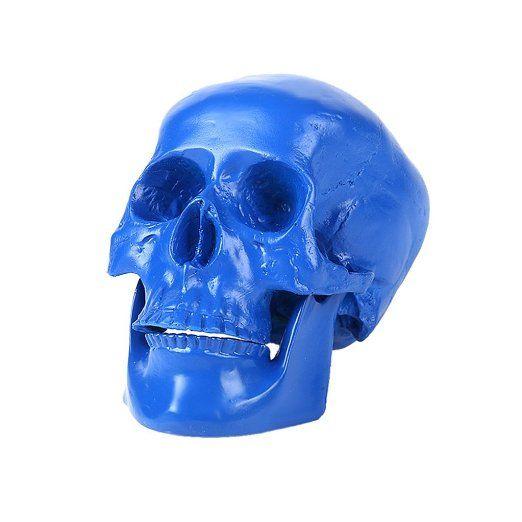 Arredamento Partito Belle Arti Teschio Umano Resina Replica Modello-- Blu Medica