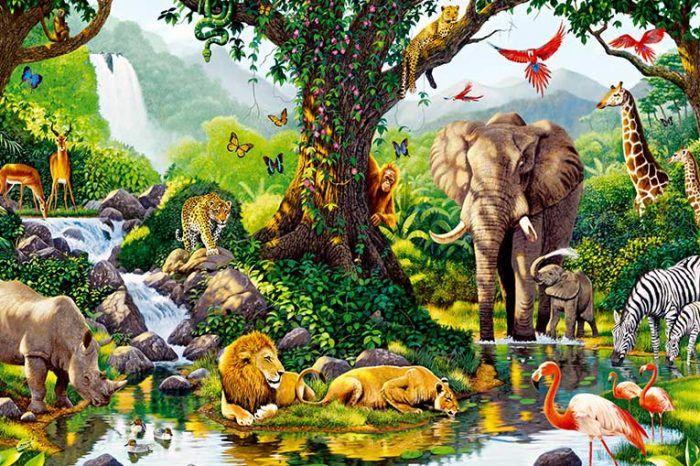 Berpetualang ke Kebun Binatang Menarik di Berbagai Belahan Dunia – Banyak sekali tempat wisata yang bisa kita jelajahi saat berkunjung ke luar negeri. Tetapi tentu tidak semuanya cocok dikunjungi bersama keluarga. Di antara sekian banyak tempat wisata, kebun binatang adalah salah satu yang cocok bagi segala usia. Ketika berlibur ke luar negeri, sempatkan waktu untuk