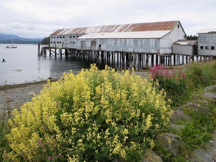 The former Nimpkish Development Corporation shellfish processing plant at Alert Bay, British Columbia, Canada.