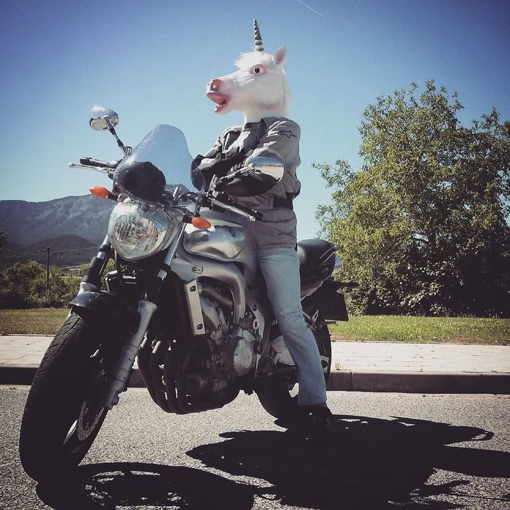 The weirdest biker you will find this summer #unicorn #funidelia #unicornio . . . . . #licorne #einhorn #bike #biker #moto #motard #fun #funny #funiparty #lol