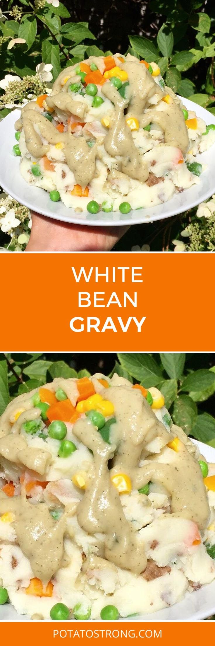 This gravy is an alternative to my chicken-style and brown gravies – substituting a can of no sodium added white kidney beans for the flour/water. Would be good for people with gluten issues as well. Ingredients 1 can of White Kidney Beans (or cook your own beans and add water for desired thickness) 1 tsp …