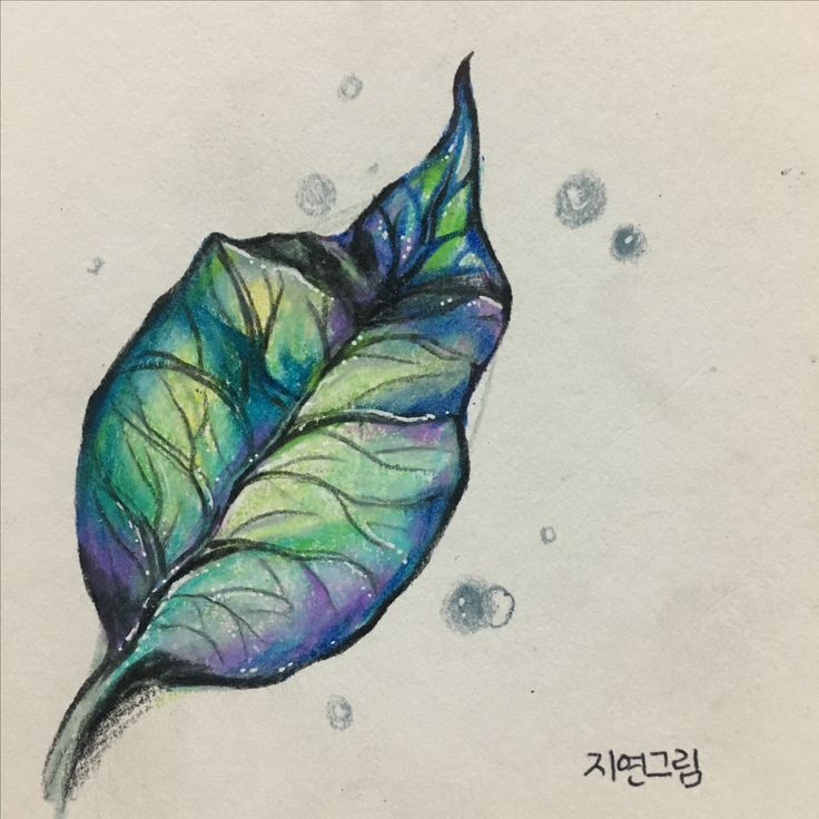 나뭇잎 한색 몽환적 분위기 느낌 색감