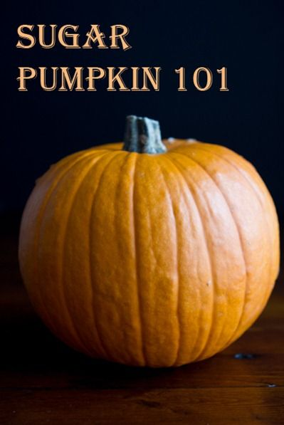 How To Roast A Sugar Pumpkin & Make Fresh Pumpkin Purée – A Step by step Photo Tutorial via oh she glows