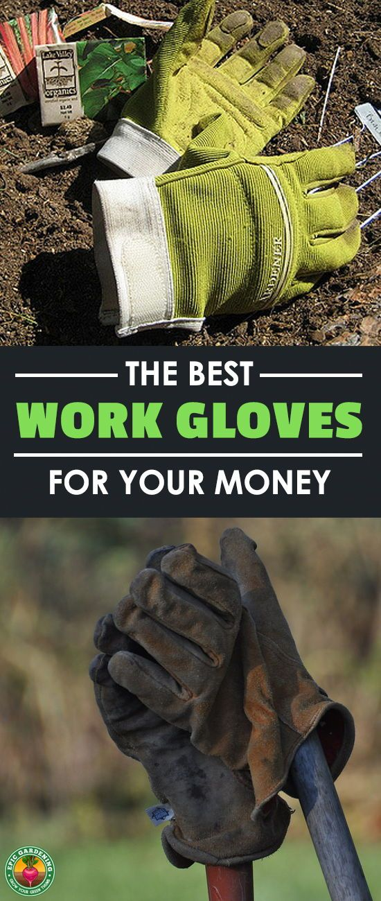 No matter what kind of work you're doing, you're going to need work gloves. Our buyer's guide will help you pick the best work gloves for the task at hand! #gloves #gardening #tools