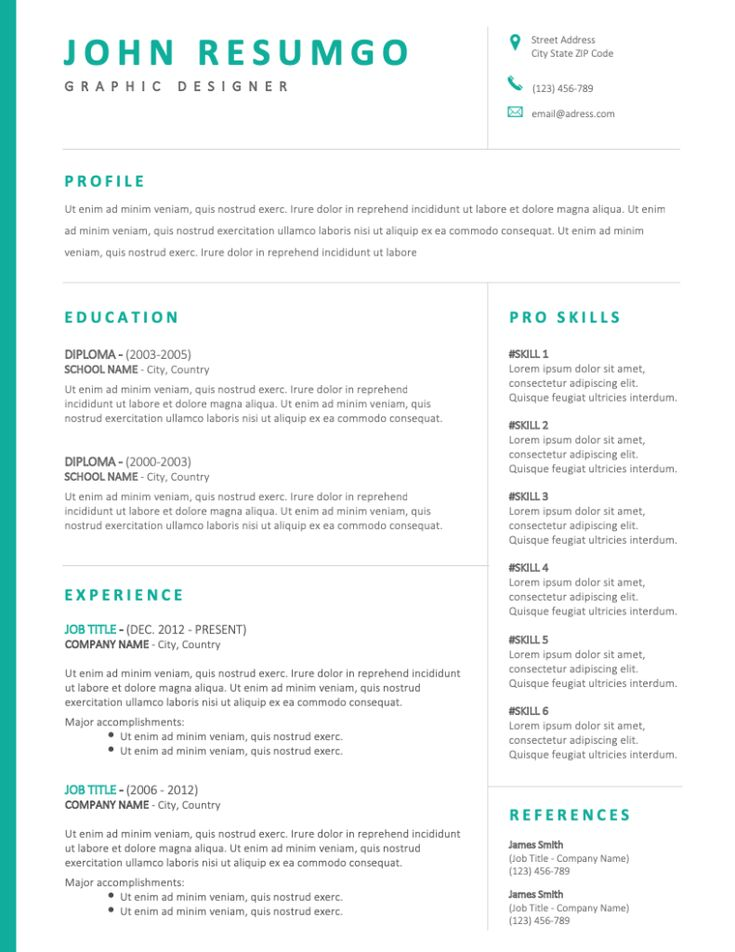 Bakchos professional resume template