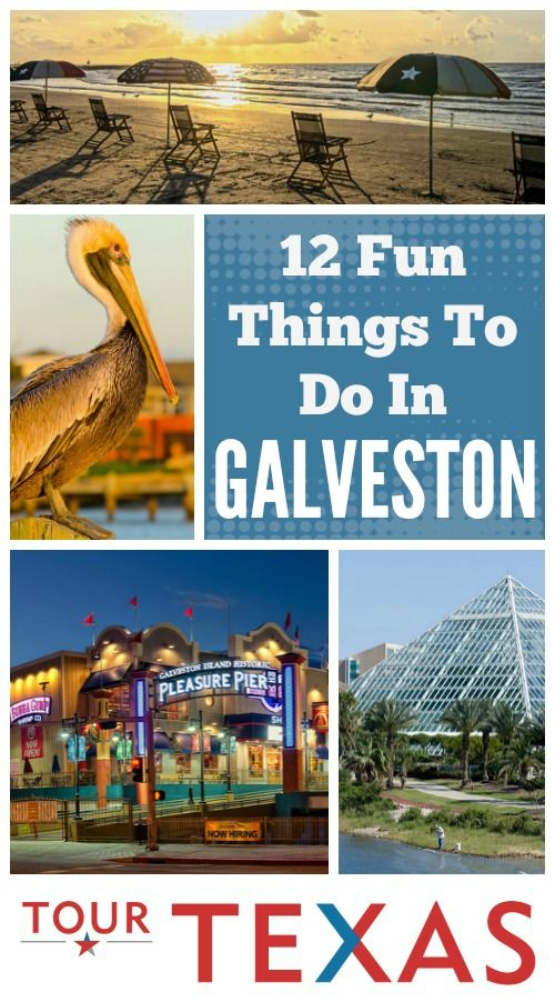"""With its magnificent beaches and captivating historic charm, there aren't many places like Galveston, TX.  Swim in the gulf, admire the breathtaking architecture, catch a show in """"The Official Opera House of Texas,"""" and have all the fun you can handle at one of Galveston's unique attractions. Check out these 12 fun things to do in Galveston. Read more: https://www.tourtexas.com/destinations/12-fun-things-to-do-in-galveston"""