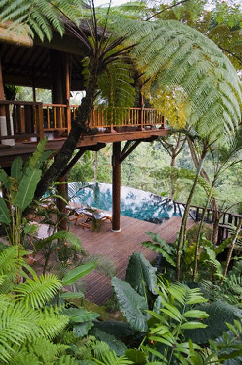 """Tropical home in Philippines - BBC Boracay says: """" One of our favorites - amazing green and natural. All your heart needs is here...Little pearl of Paradise!"""""""