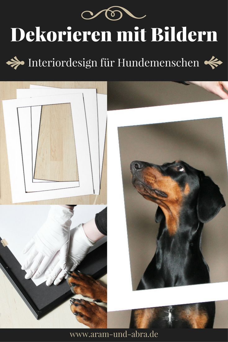 Bilder, Tierportraits, Zeichnungen und Hundefotos richtig einrahmen - eine Schritt für Schritt Anleitung. Von: Aram und Abra   Interior   Design   Fotografie   Hunde   Kunst