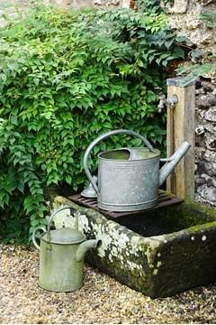 A stone trough under each faucet. Start moss on them.