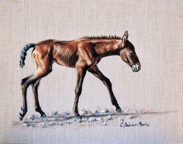 Rabid Horse Artwork Home Facebook - 600×470