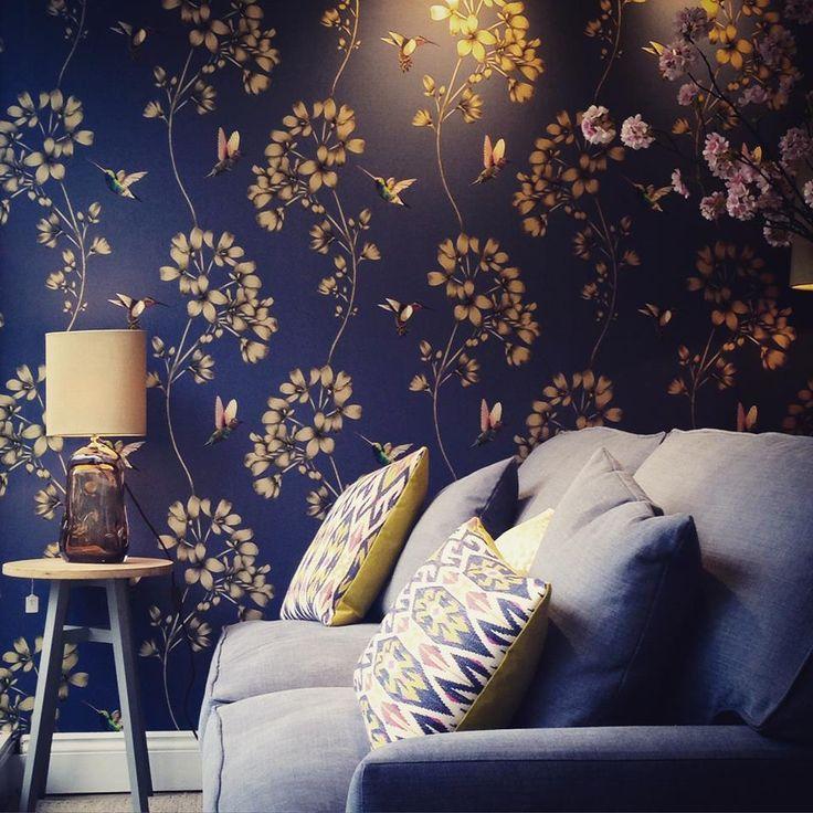 Amazilia wallpaper