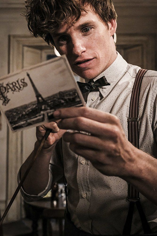 Eddie Redmayne In Fantastic Beasts The Crimes Of Grindelwald