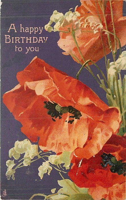 A HAPPY BIRTHDAY TO YOU  red & pink poppies