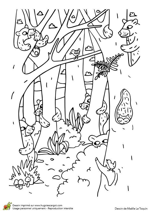 Coloriage du jeu du cache-cache des animaux, les ours, page 6 sur 12 sur HugoLescargot.com