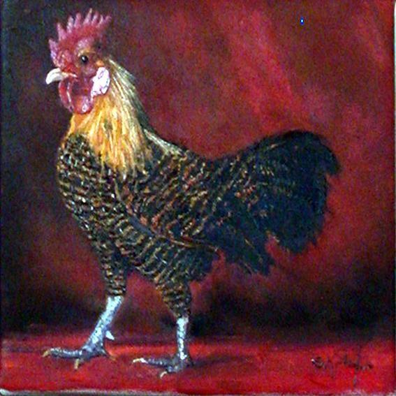 coq bi-color sur fond orangé - Peinture,  20x20 cm ©2009 par Serge KRIEF - Peintre -                            Art figuratif, coq, animaux, coqs