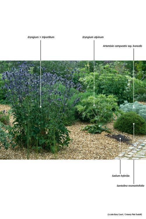 25 beste idee n over droge tuin op pinterest landschapsontwerp tuinontwerp en grind tuin - Foto droge tuin ...